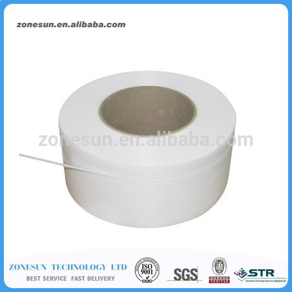 TUV CE GS PP Emballage Sangle 15mm/Polyester Sangle Sangle/Polyester Web Bracelet Fabrication Les fabricants, fournisseurs, exportateurs, grossistes