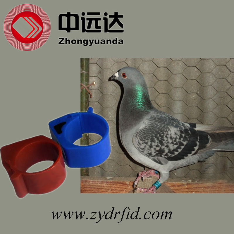 Puce RFID tag racing Pigeon anneau benzing avec ID impression Fabrication Les fabricants, fournisseurs, exportateurs, grossistes